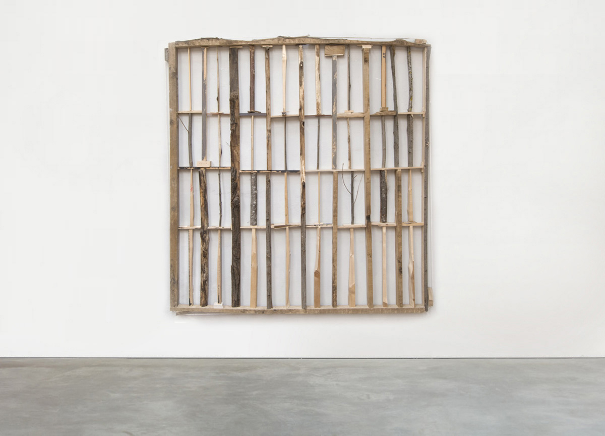 limes, 2016 rope, wood sticks and branches, 165 X 165 cm